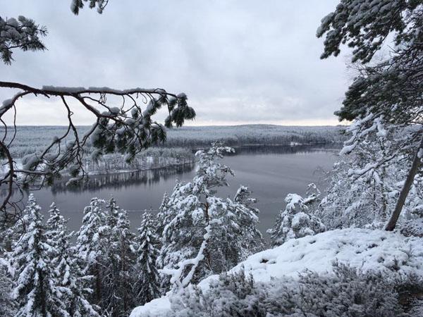 Järjestöreissaaja Mikko Vainio Repoveden kansallispuistossa