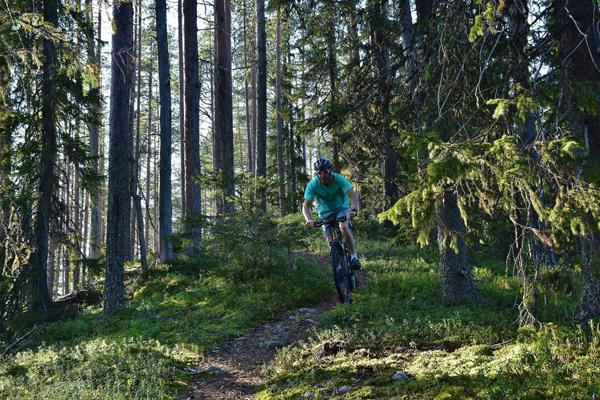 Vaara Sportin pihasta pääset maastopyöräilyreiteille.